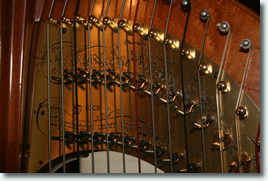 Detail of top of Lyon & Healy 100 Harp