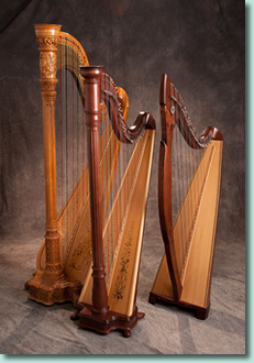 Three of Roxanne Ziegler's beautiful harps